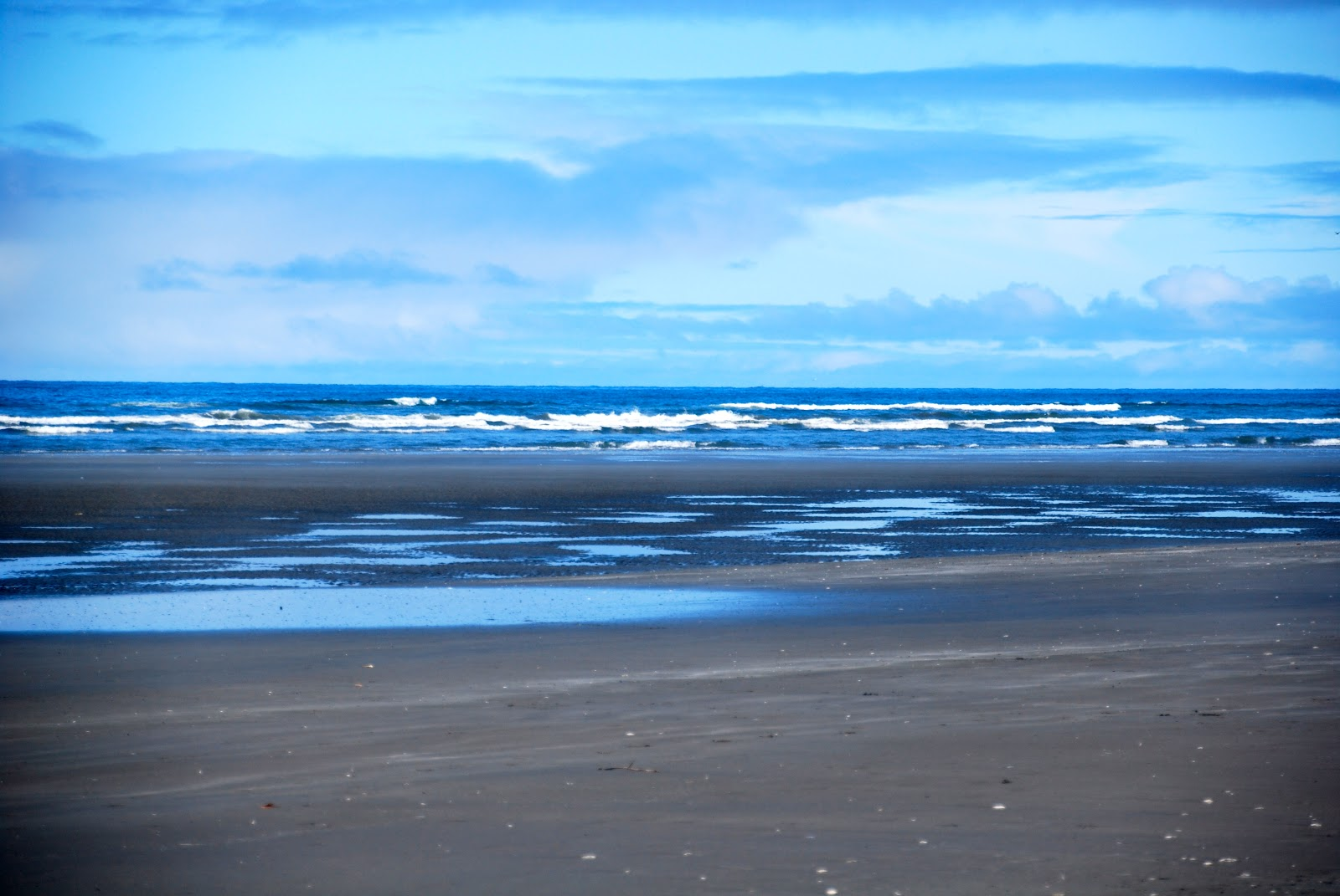 Pacific Beach State Park, a Washington State Park located ... |Pacific Beach State Park