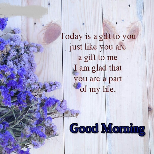 Best Good Morning Quotes In English For Whatsapp Status 2019