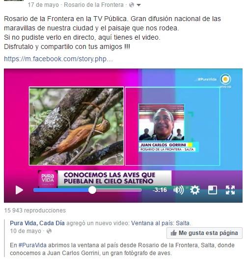 aves, Salta, avistaje, Rosario de la Frontera, Karina Mazzocco, TV Pública, Pura vida cada día