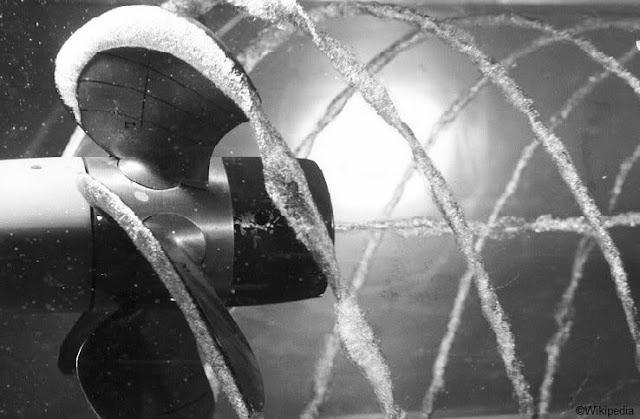 propeller cavitation image