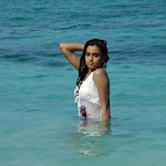 Dimple Chopda Wet in Beach  Hot Images
