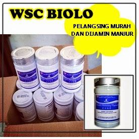 WSC Biolo Obat pelangsing perut Cepat alami paling manjur ...