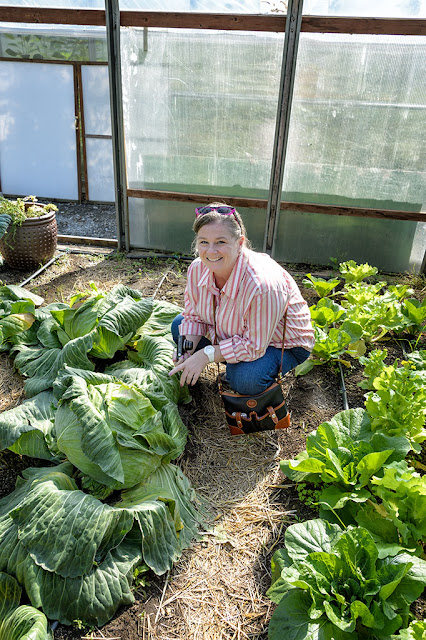 Peg points to a giant cabbage at Jewell Gardens