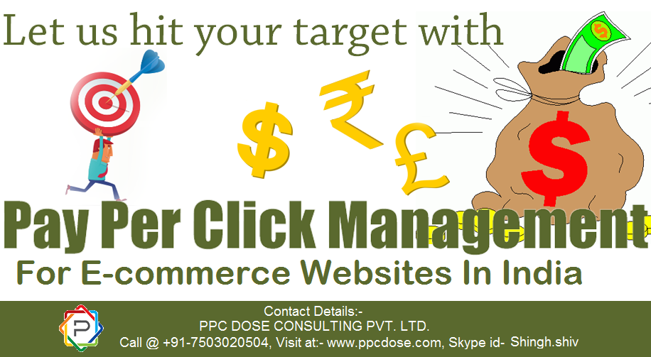 Ecommerce PPC Marketing Services