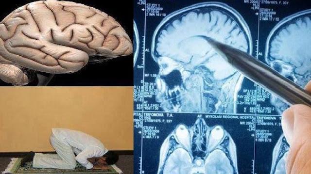 Otak Manusia Seperti Orang Sujud, Anda Akan Lebih Rajin Sholat Setelah Baca Ini