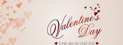 Happy Valentines Day 851x315 Facebook Covers
