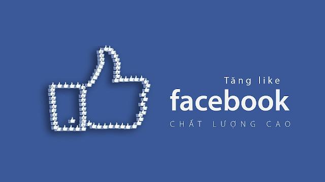 Dịch Vụ Tăng Like Fanpage Facebook Uy Tín Tp.HCM