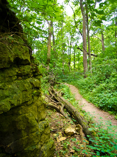 Walls of the old quarry - Hoyt Park