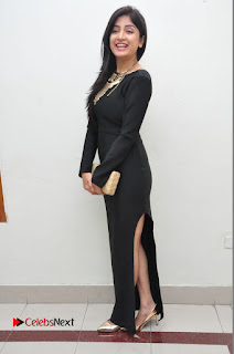 Actress Poonam Kaur Latest Pictures in Black Long Dress at Thikka Audio Launch  0055