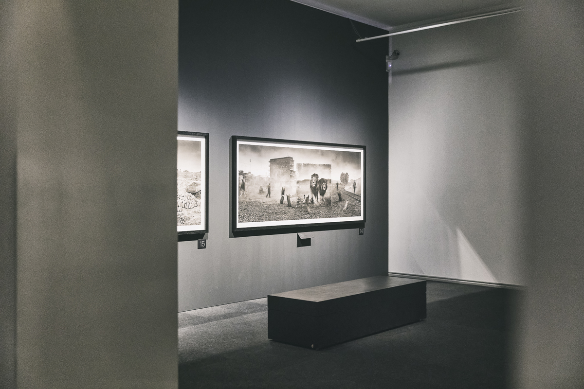 Helsinki, visithelsinki, suomi, finland, National Museum, Inherit the dust, kansallismuseo, Nick Brandt, valokuvanäyttely, valokuvaaja, Frida Steiner, Visualaddictfrida, Visualaddict, blogi, photographer