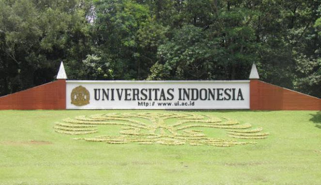 Menuju International University Bersama Universitas Indonesia