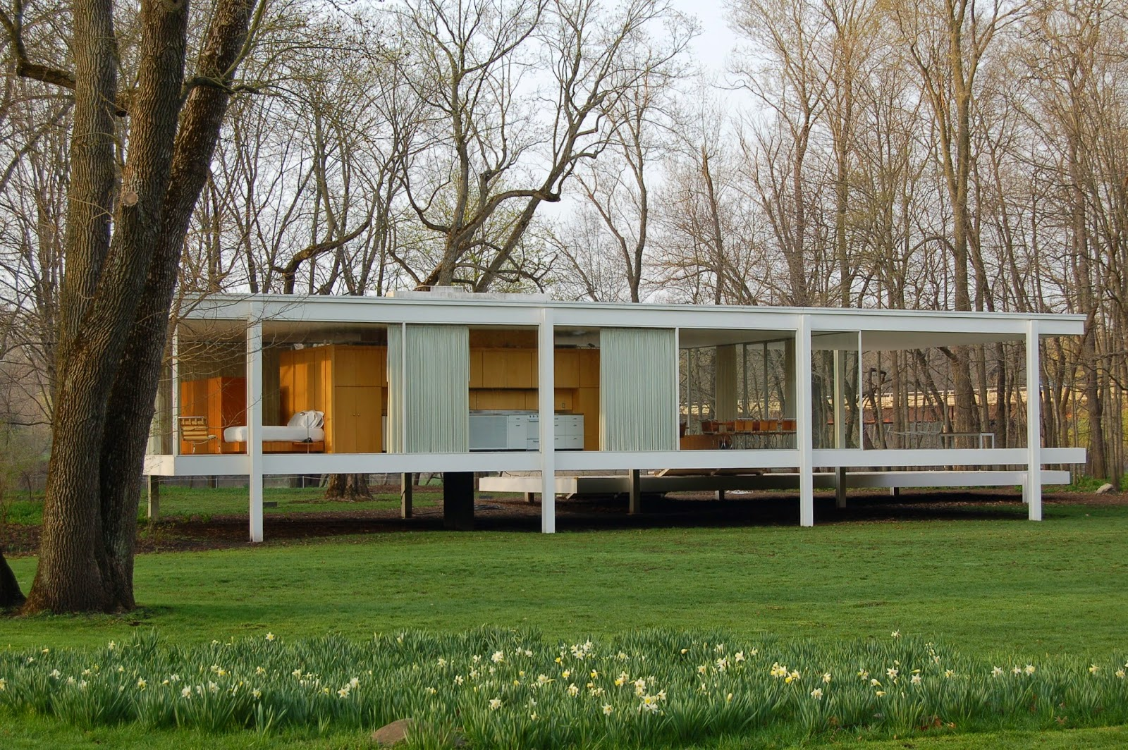 mies van der rohe less is more in geteisterde farnsworth house architecture more. Black Bedroom Furniture Sets. Home Design Ideas