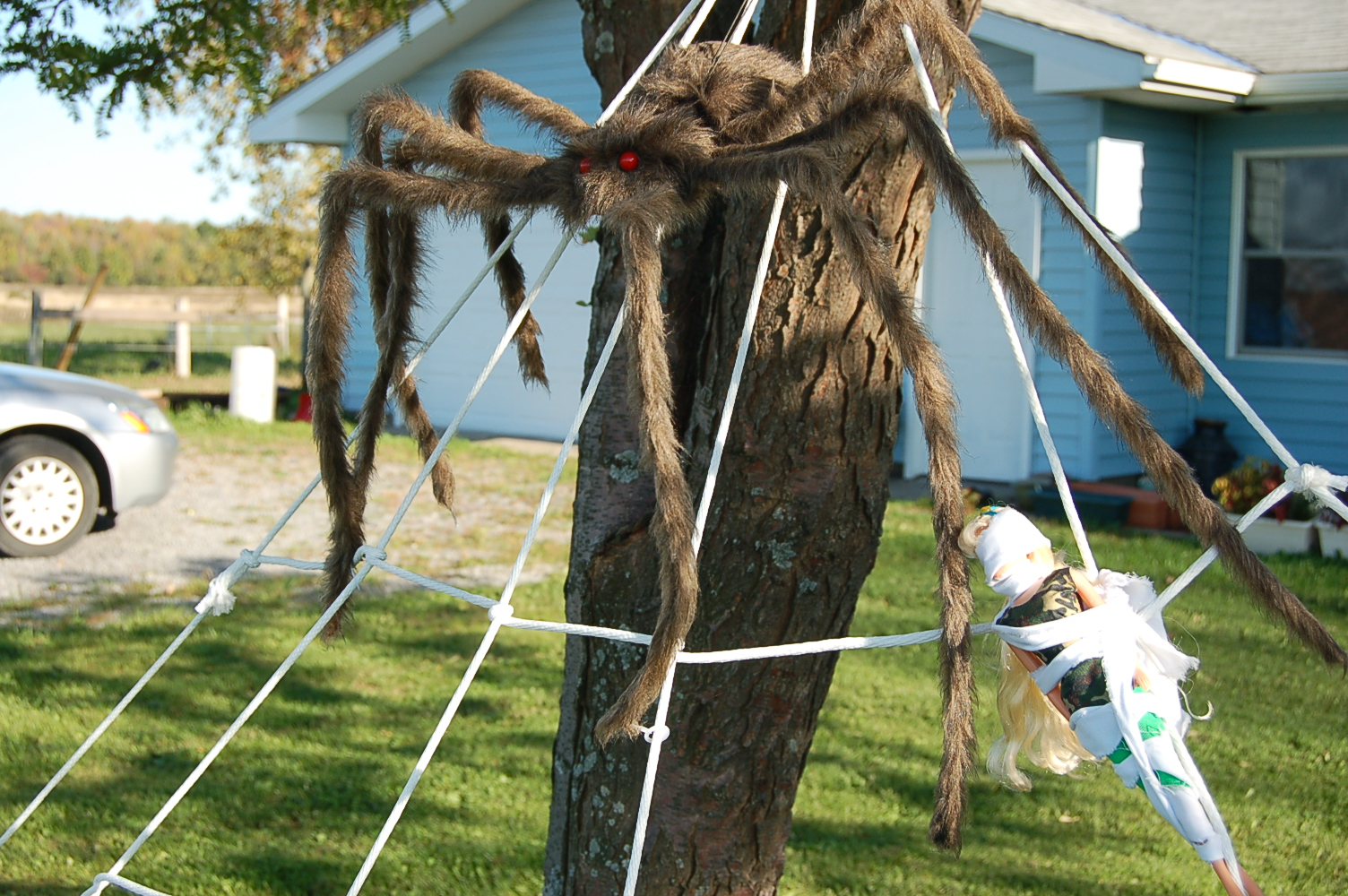 halloween diy 2 giant lawn spiderwebs. Black Bedroom Furniture Sets. Home Design Ideas