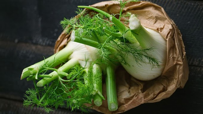 Health And Beauty Benefits of Fennel