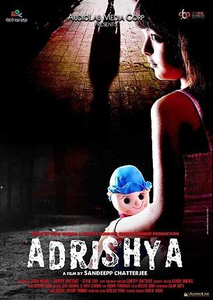 Adrishya 2019 Hindi 800MB HDRip 720p