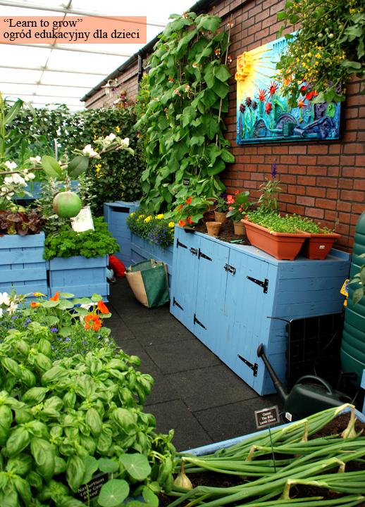 Kreatywnie - w domu i w ogrodzie: Pięknie i praktycznie - pomysły na ogród warzywny