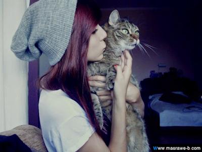 صور صور قطط كيوت 2020 خلفيات قطط جميلة جدا cats8.png
