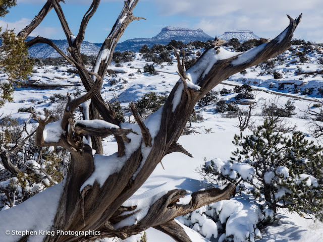 Wintertime scenic of Bears Ears and Elk Ridge from Natural Bridges
