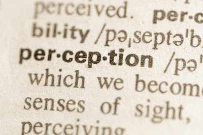Definition of perception