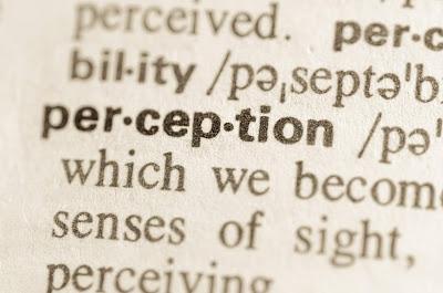 Definition of perception