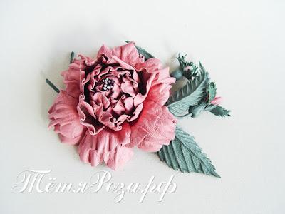 Тетя Роза, студия Тетя роза