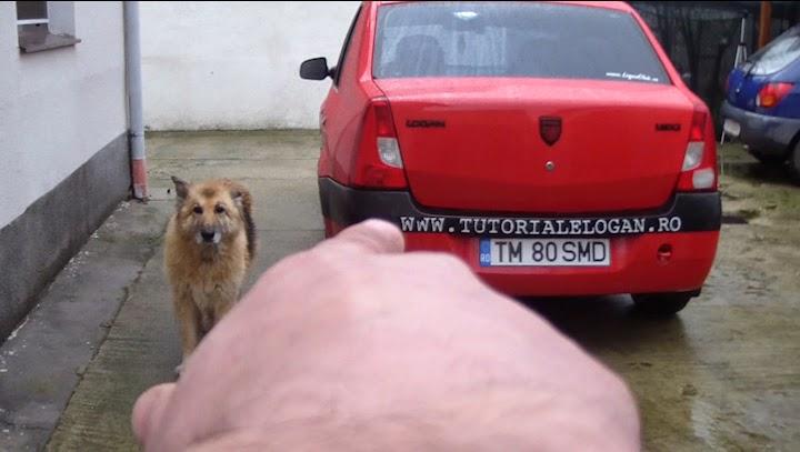 http://www.tutorialelogan.ro/2015/01/deschiderea-capotei-portbagaj-si-motor.html
