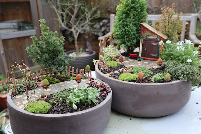 Fairy Garden path patio plants miniature decorations