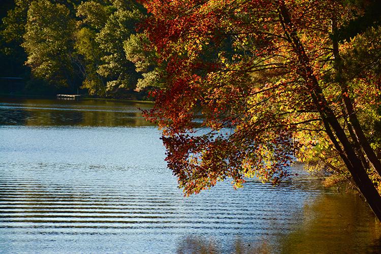 Mirror Lake State Park, Hiking | My Darling Days