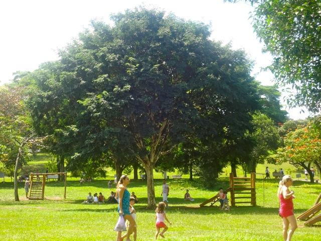 Ceret playground
