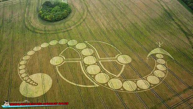 Inilah Crop Circle yang Diduga Buatan Alien, Percaya?