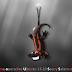 Sistema operativo Ubuntu 13.10 Saucy Salamander-descargar gratis