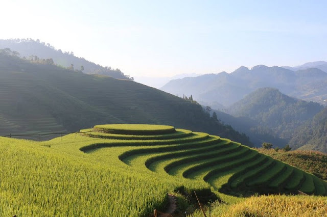 Highlights of The Trip Sapa & Mu Cang Chai Packages Tours 2