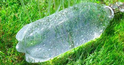 Guarde suas garrafas plásticas – você precisará delas para seu jardim