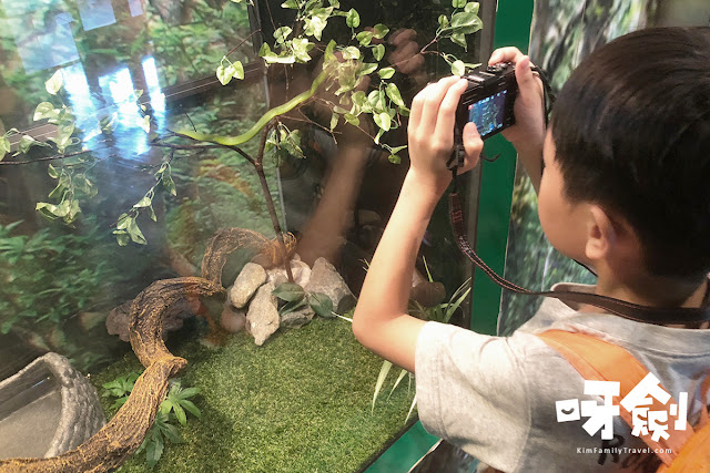 【親子好去處】林邊生物多樣性自然教育中心
