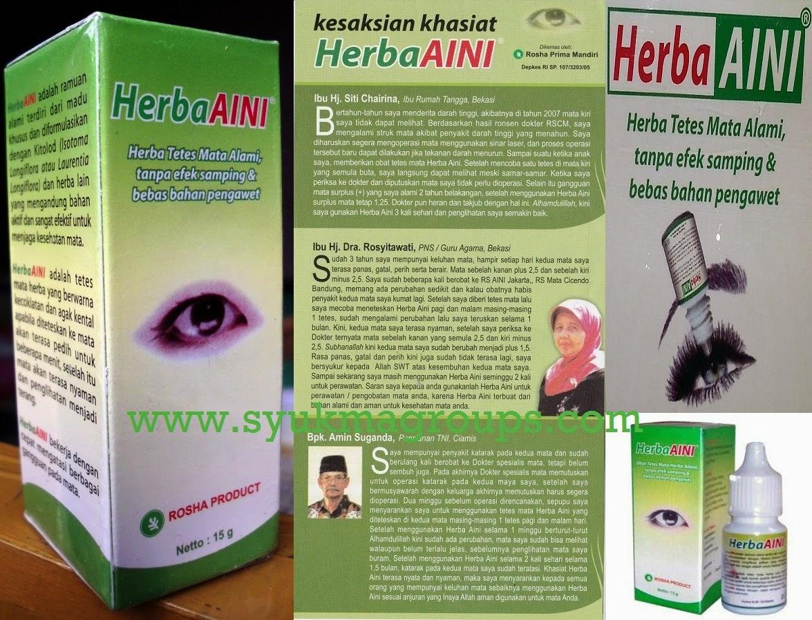 Herba Aini