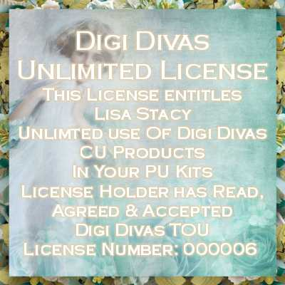 UNLIMITED LICENSE