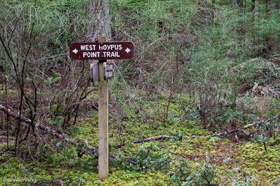 West Hoypus Point Trail