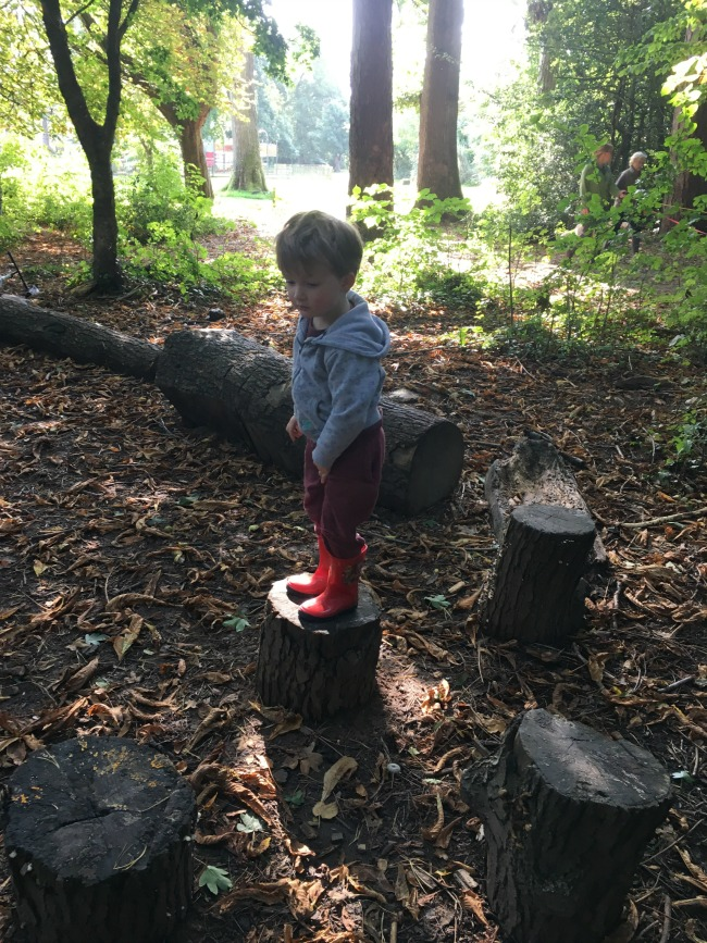 boy-stood-on-log-at-tredegar-country-park