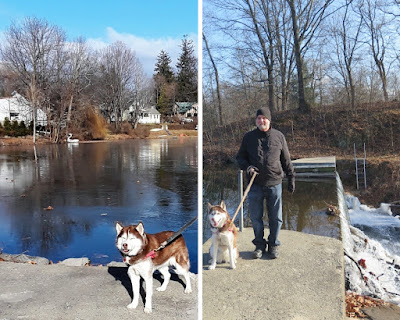 Park and lake in the town of Rhinebeck, New York.  Dogs are allowed in this Rhinebeck park.  Dog friendly, Pet friendly, dog friendly places in upstate New York