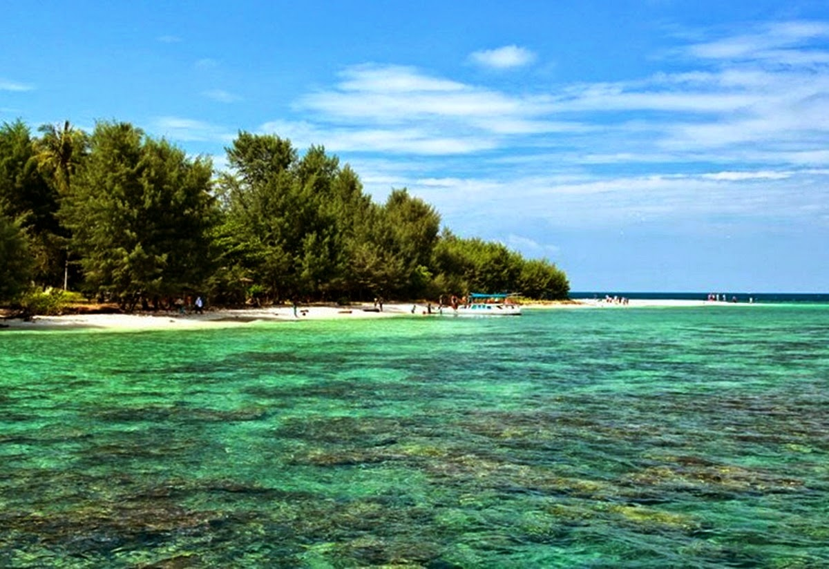 Arti Ekosistem Hutan Pantai