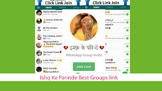Ishq Ke Parinde Best Groups link