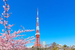 日本上網SIM卡與WIFI網路分享器應該怎麼選?
