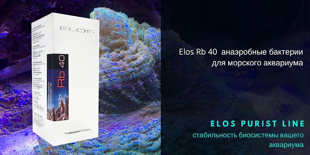 Elos Rb40