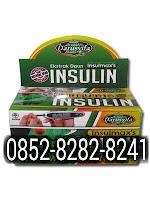Insulmaxs Ekstrak Daun Insulin Sahabat Diabetes Isi 60 Kapsul