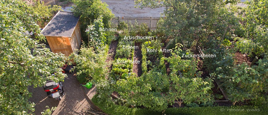 Selbstversorgung aus dem Garten mit Biogemüse