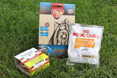Meat Hit Skin & Coat, Royal Canin Energy oraz karma mokra Schesir - recenzja