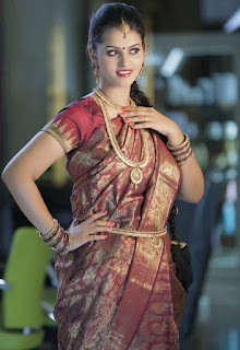 Actress Swathishta Krishnan Pictureshoot Pictures in  saree (2).jpg