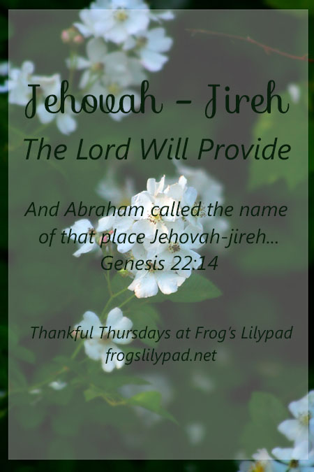 Frog's Lilypad Thankful Thursdays - Jehovah-Jireh {The Lord Will Provide} We can be rest assured when we have needs and go to Jehovah-Jireh (the Lord will provide) He will provide, just has His name says. l frogslilypad.net