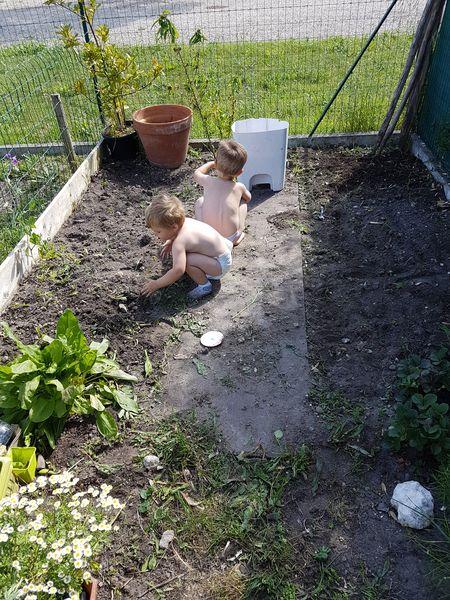 carre-potager-petit-coin-jardin
