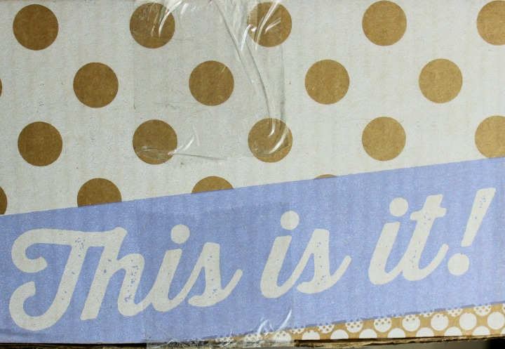 Review and unboxing of the Winter/Spring ModCloth Stylish Surprise box